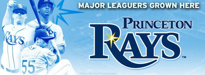 4. It has a minor league baseball team.