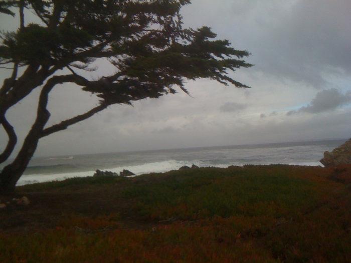 5. Monterey