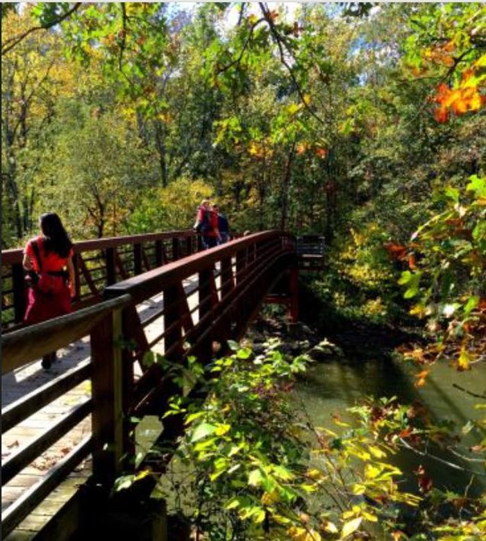 Visitors can walk across bridges and boardwalks to access the islands and get close to the falls.