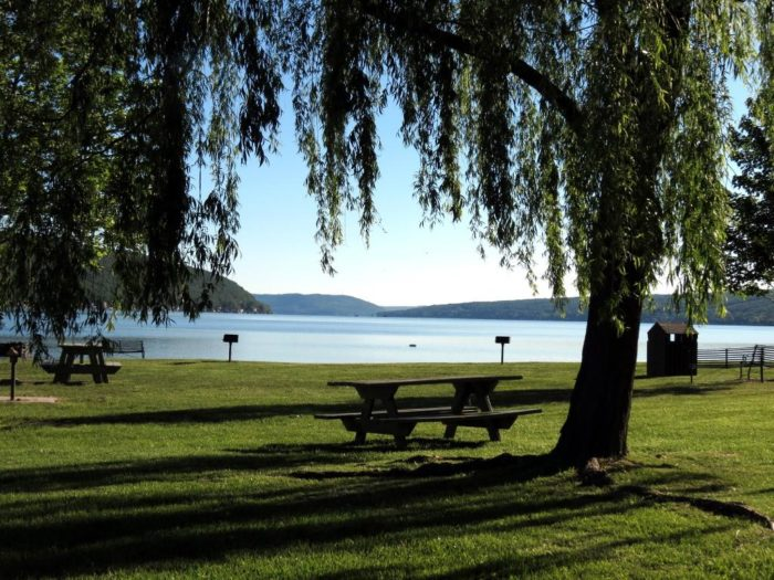 Enjoy a picnic down by the water at the local spacious park!