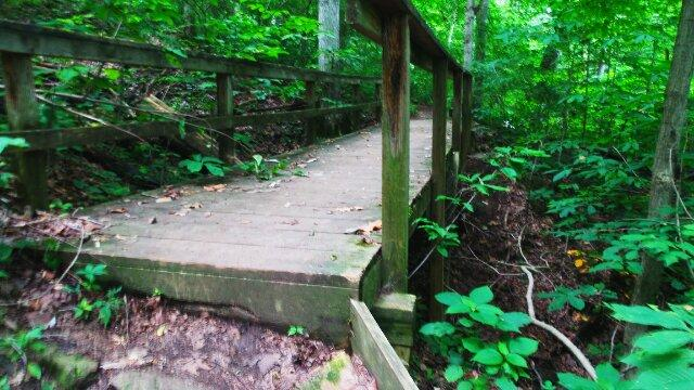 4. Charlestown State Park— Trails #6 and #3