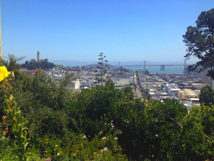 And check out Coit Tower peeking out from Telegraph Hill.