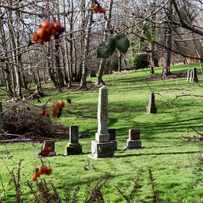 6. Comet Lodge Cemetery