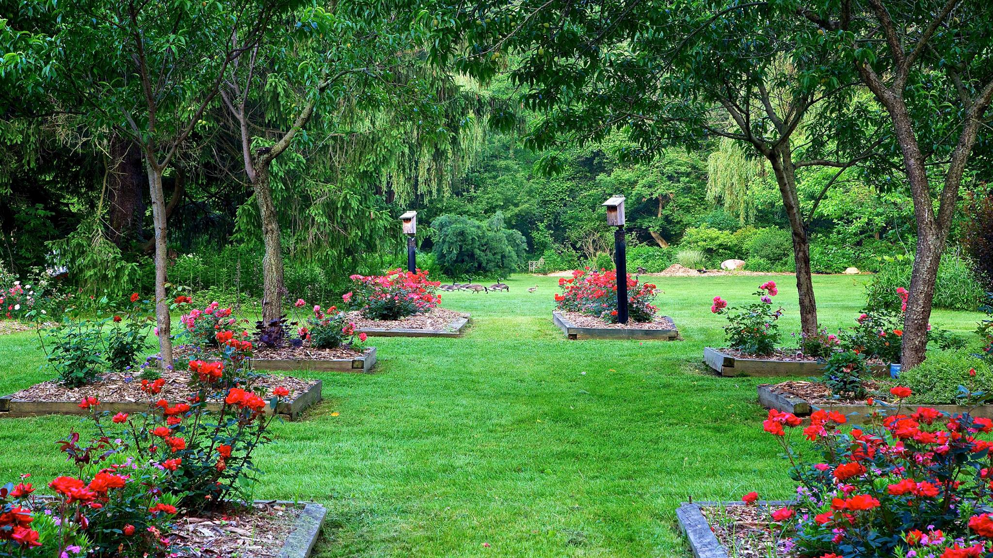 Friendship Botanic Gardens Is A Slice of Paradise In Indiana