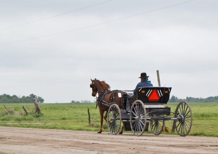 5. The Amish Boulevard, Hazleton