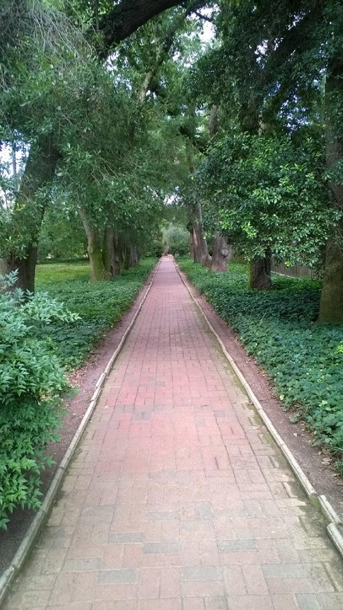 hope-path