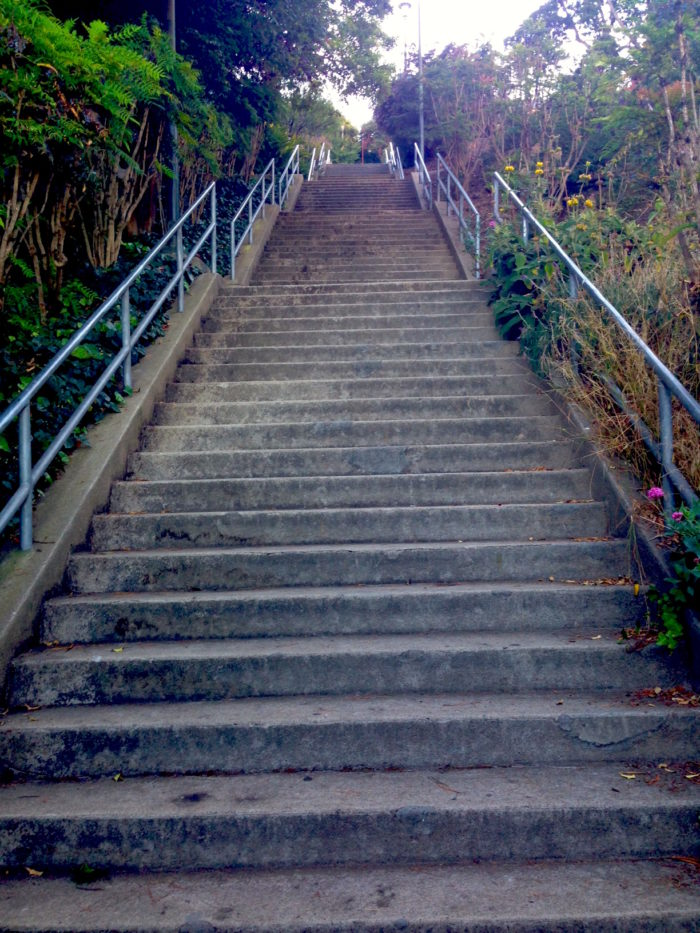To get to Ina Coolbrith Park: Climb up Taylor Street to reach its intersection with Vallejo Street (at 1715 Taylor Street), or walk up Vallejo from the east and ascend this foliage-lined stairway.