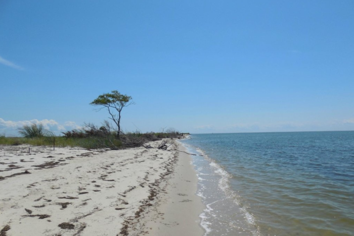 This untouched Maryland gem is a little slice of paradise worth checking out.