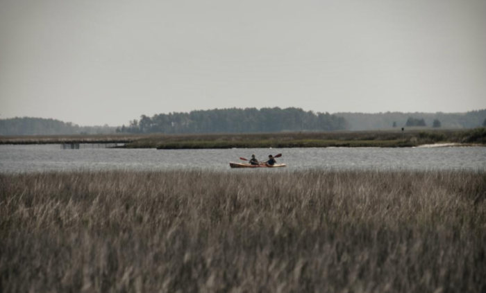 You'll paddle through marshy wetland areas...