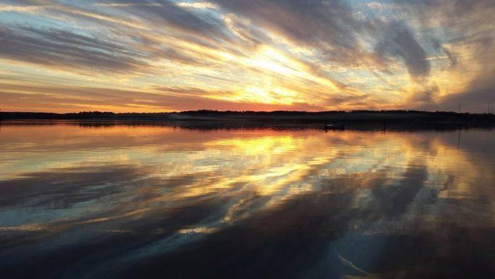 6. Lake D'Arbonne