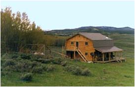3. Cow Cabins