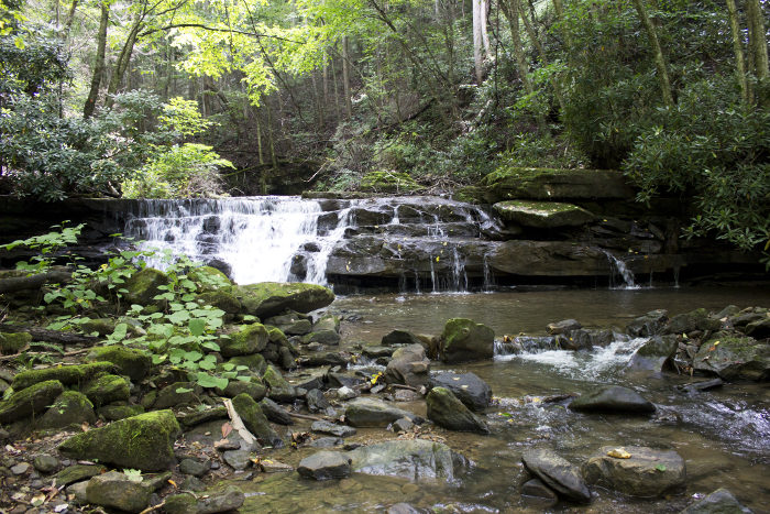 As the creeks descend into the gorge, they form waterfalls.