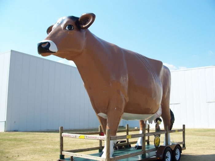 It's also hard not to miss the big ol' brown cow named Maggie mooing hellos to all the guests.