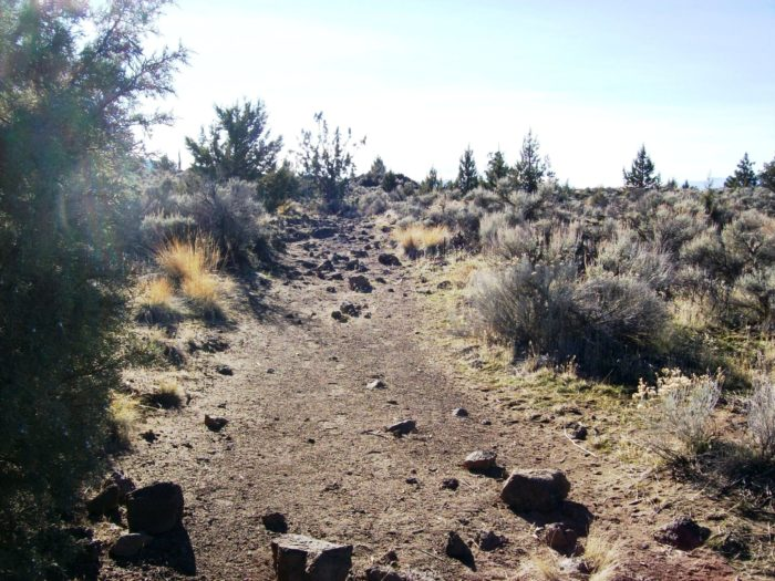 What makes this not your average hike is that it's got that high desert feel with Mt. Shasta looming above. From twisted junipers to gnarly old desert bushes, it's a short jaunt to the cave.