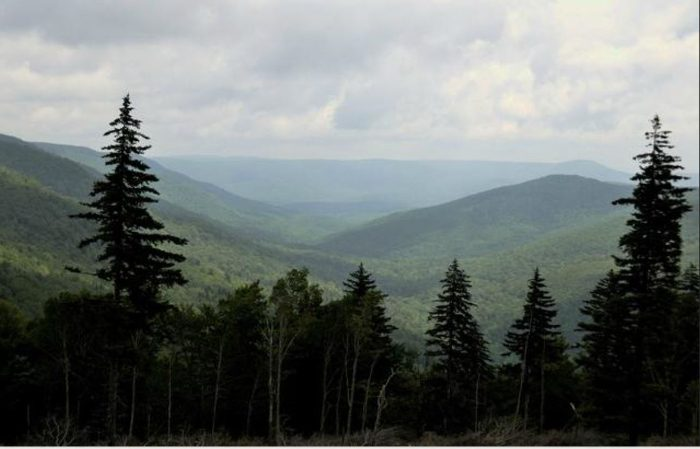 To the east, you'll see the The Ridge-and-Valley Appalachians.