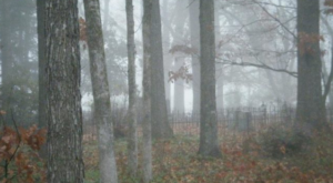 Visiting This Haunted Mississippi Cemetery Will Give You Goosebumps