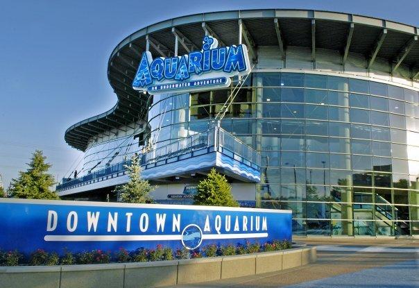 4. Downtown Aquarium
