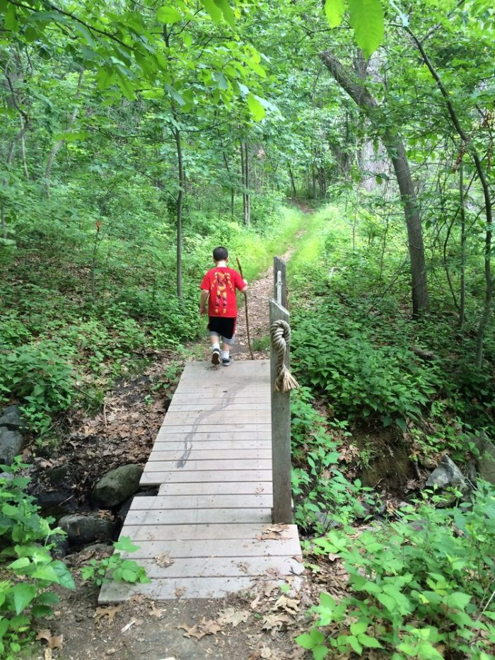 6. While some of the paths are great for all ages, there are others that are designed for the avid hiker.