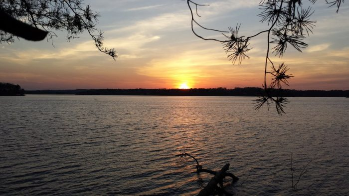 7. Uwharrie National Forest