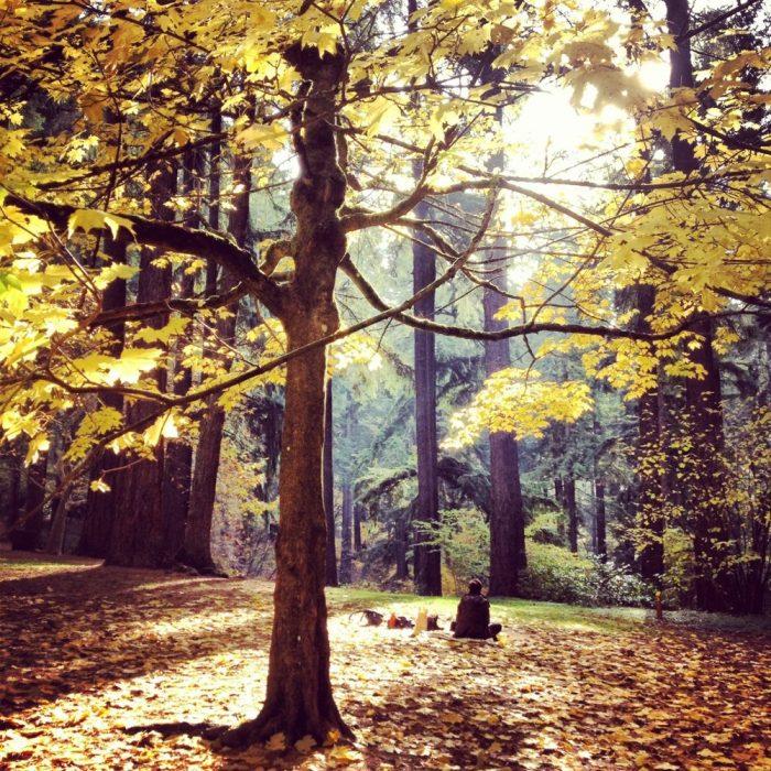 5. Mount Tabor Park