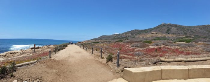Head to Cabrillo National Park in San Diego. You'll take the Tidepool and Bluff Trail -- it looks a bit like this when you start.
