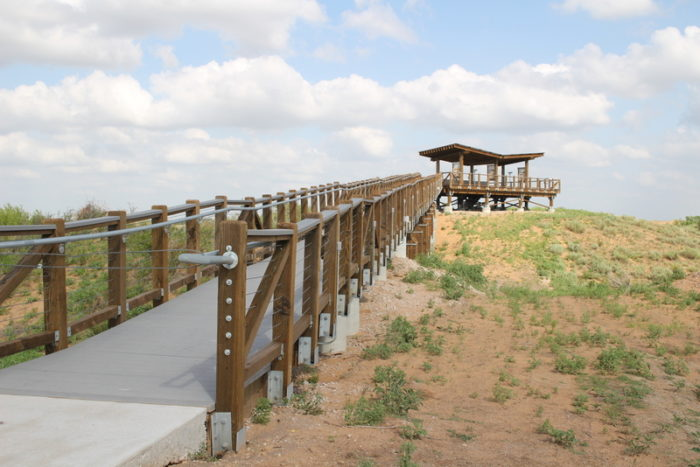 A viewing platform has been built for sightseers who wish to stay out of the dunes.