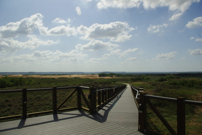 You can walk along the path and enjoy the dunes from the distance.