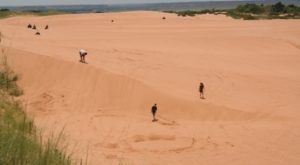 Most People Have No Idea Oklahoma Has A Sahara Desert…And It's Truly Amazing