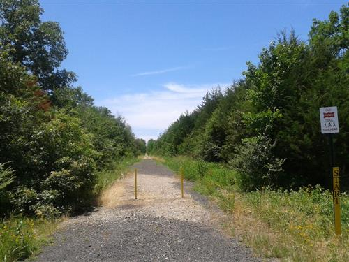 The pathway is mostly flat and a great trail for any level hiker.