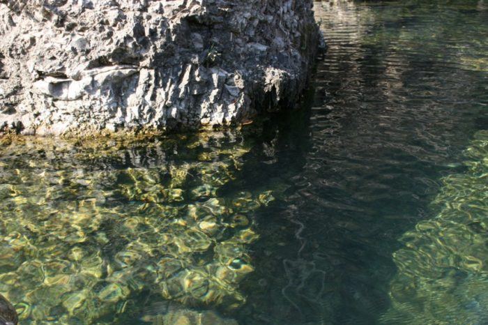 This boulder reflects the crystal clear water found in Spring Creek.