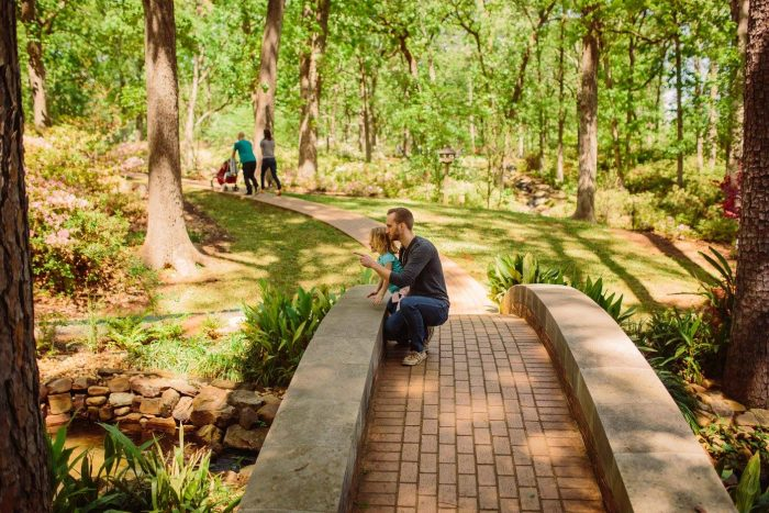 There are a variety of water features and winding paths to make exploring the garden easy.