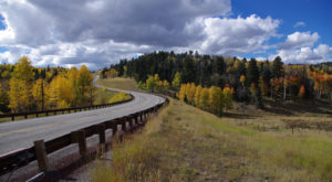 Take This Road To Nowhere In New Mexico To Get Away From It All