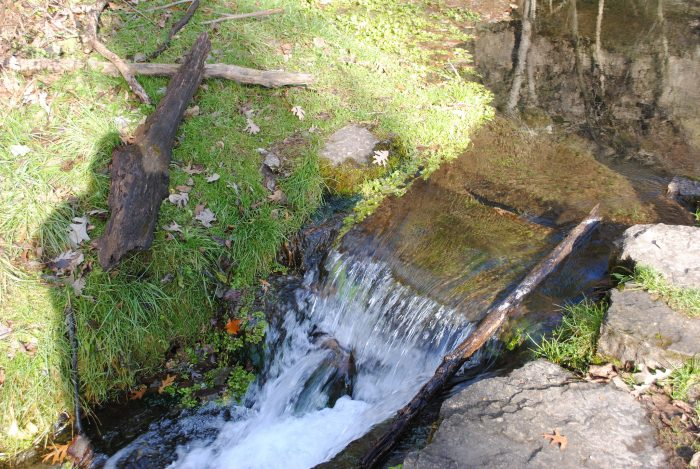 4. Richmond Springs, Backbone State Park