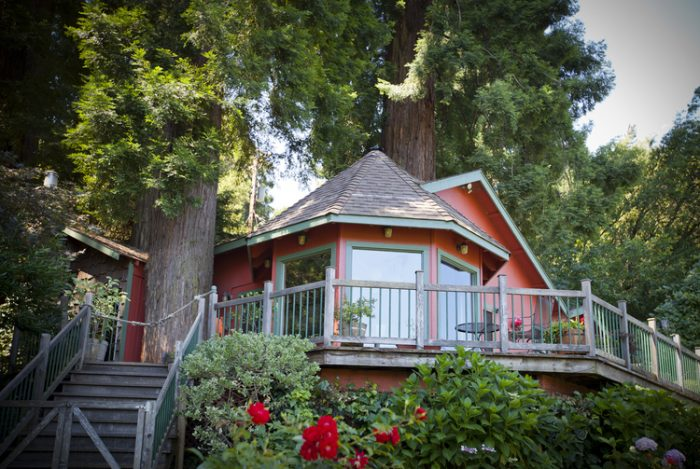 3.  Redwood Treehouse, Redwood Drive, Healdsburg