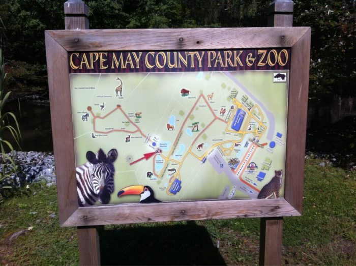 Cape May County Park