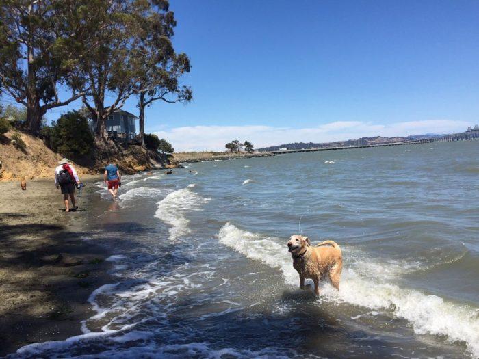 8. San Quentin Beach