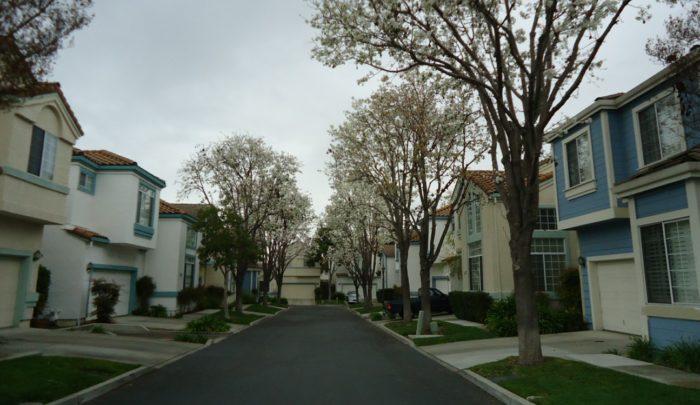 7. Santa Clara County: 11/10,000 residents