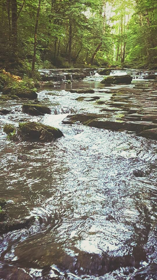 10. A perfect babbling brook.