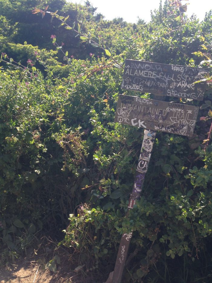 Once you've reached this well-worn sign, you'll take a left. And yes, it may seem like you are heading off-trail, but keep following the narrow path. Watch for poison oak—long layers are highly recommended here.