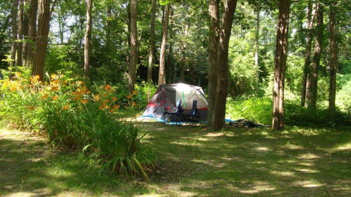 5. Sippewissett Campground and Cabins, Falmouth