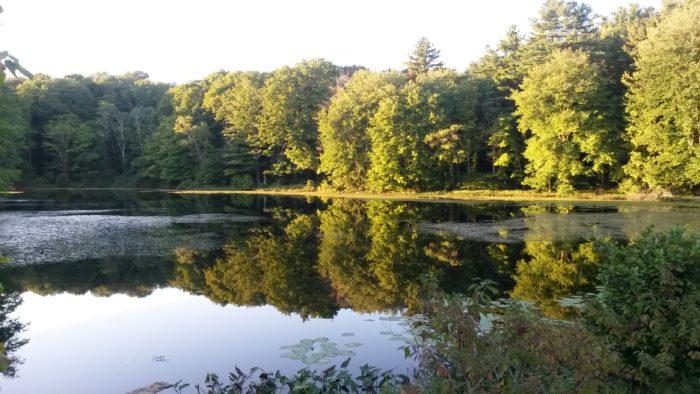 4. Supply Pond