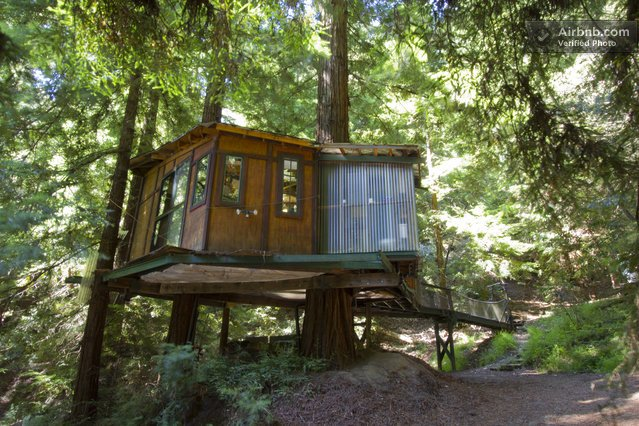 1. The Redwood Treehouse,  Vaca Del Sol Rd., Corralitos