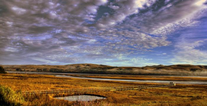 9. Tomales Bay & Bodega Bay