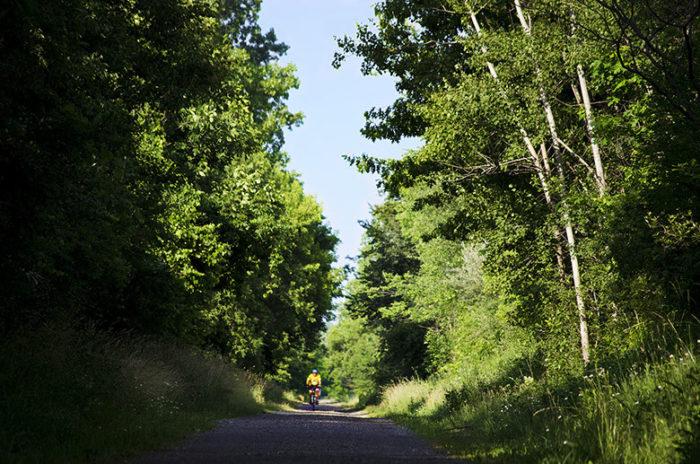 trail woods rh