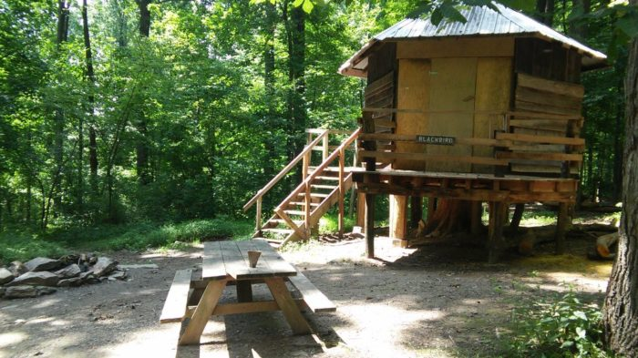 6. Maple Tree Campground