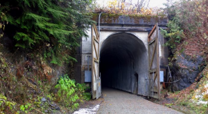 Most People Have No Idea This Unique Tunnel In Washington Exists
