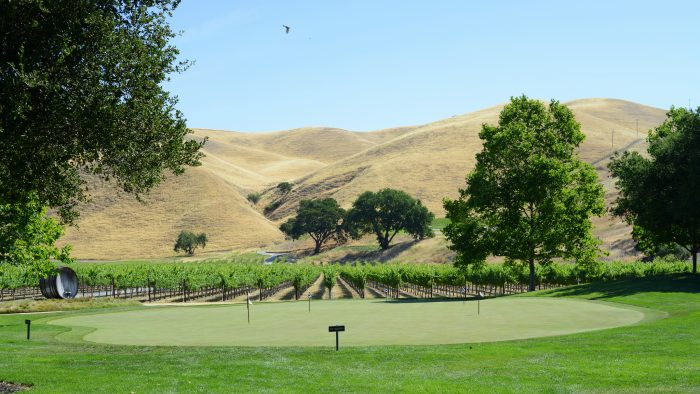 8. Summer Concerts at Wente