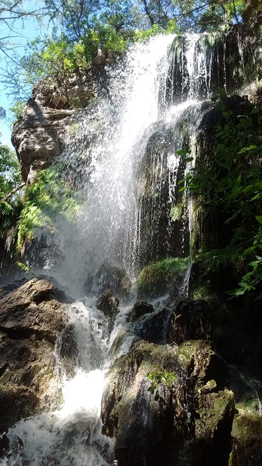 And it's just as, if not more, beautiful from the front. Almost like a mini Gorman Falls!