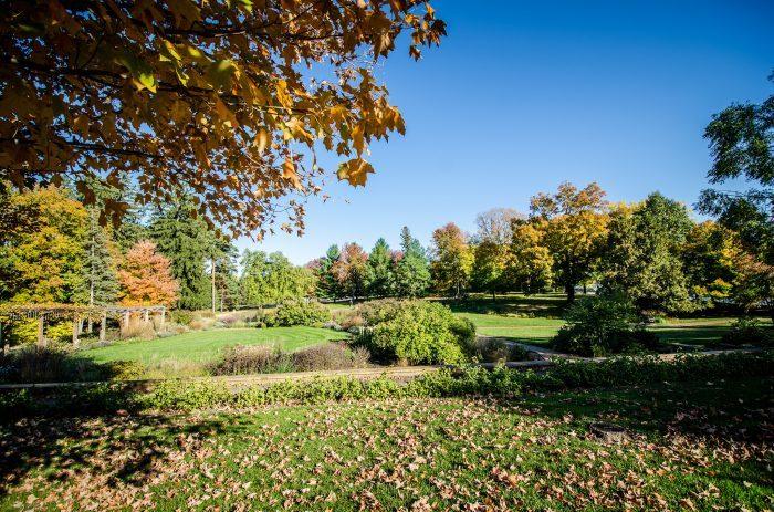 8.  Noerenberg Gardens