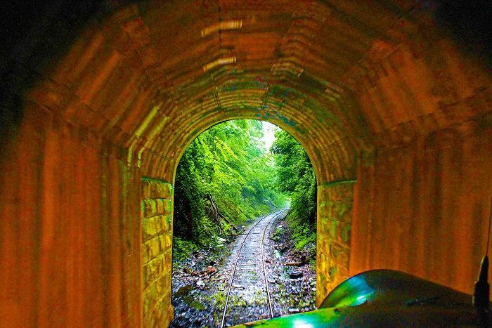The train travels through a tunnel.